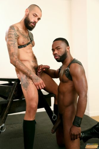 black-men-naked-gay-sex (9)